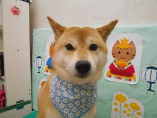 21.3.30ニシヤマ ムサシ.JPG