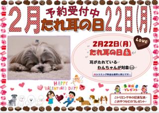 たれ耳の日ポスター ブログ.png