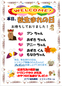 秋生まれ歓迎 ブログ用.png